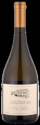 Viapiana Chardonnay 2015 - Esgotado!